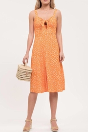Blue Pepper Poppy Fields Dress - Front cropped