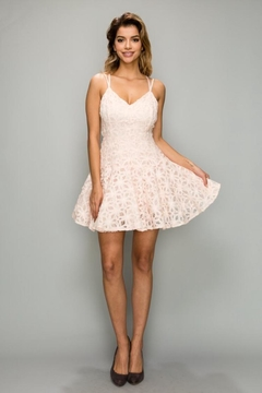 Shoptiques Product: Blush Lace Dress