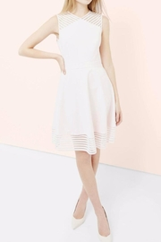 Ted Baker London Blush Skater Dress - Product Mini Image