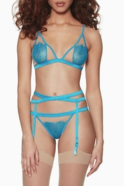 blush lingerie Heart's Desire Set - Front cropped