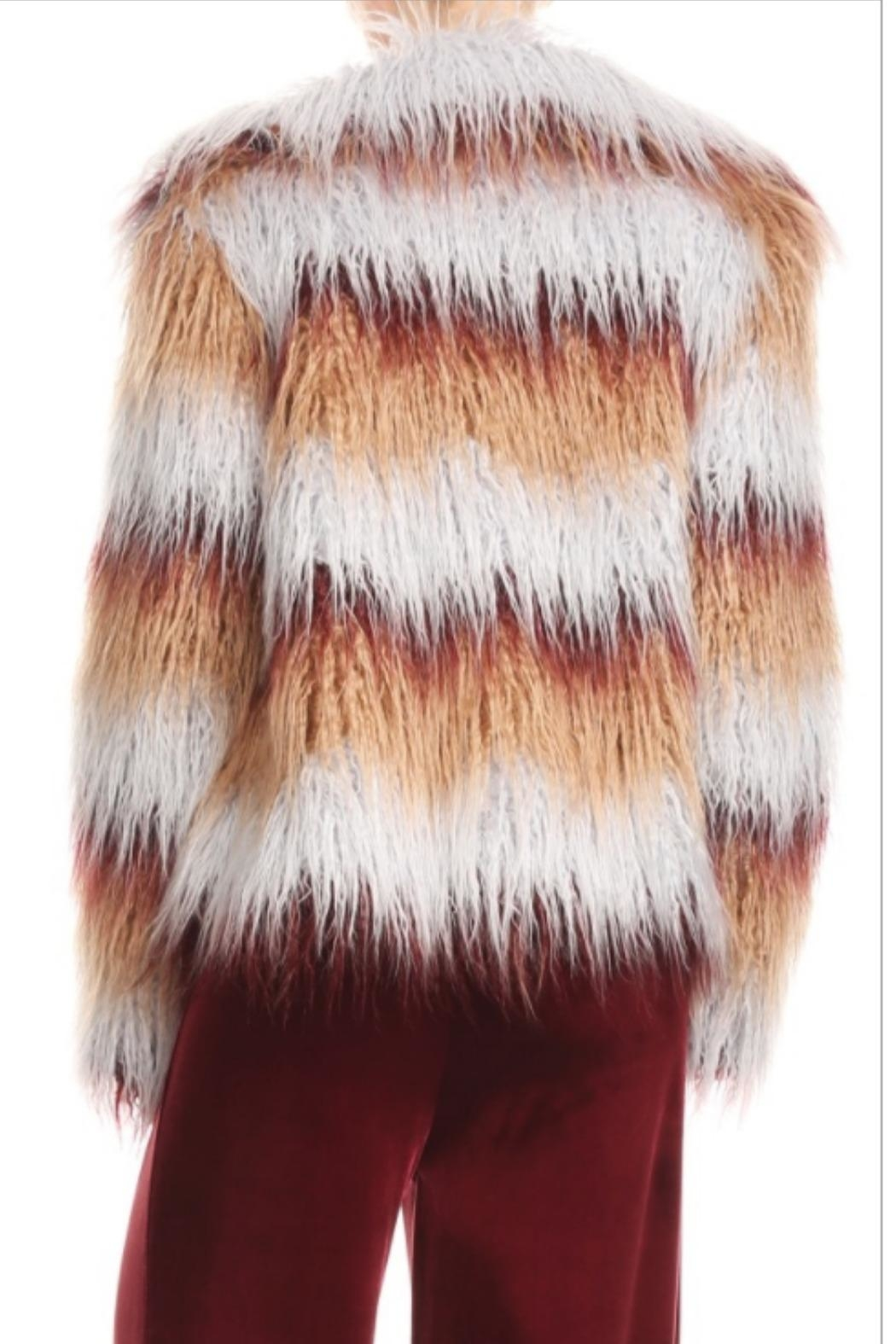 Blush Noir Multi-Colored Fur Jacket - Side Cropped Image