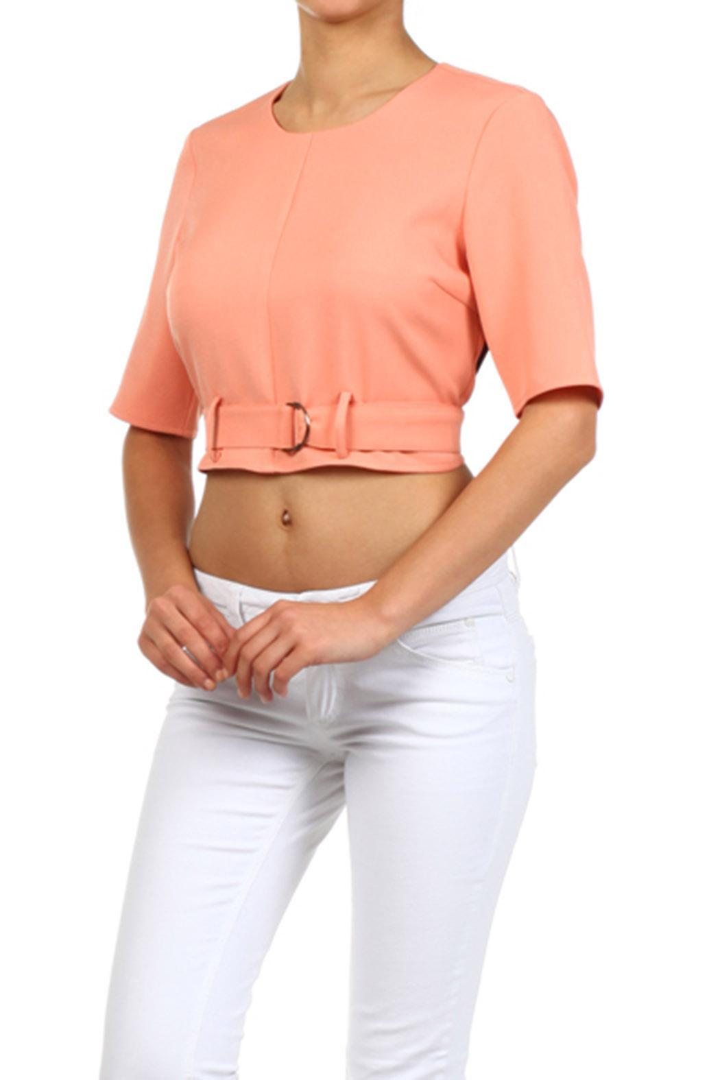 Blvd Belted Crop Top - Side Cropped Image