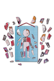 Janod Body Magnets In 12 Languages - Front full body