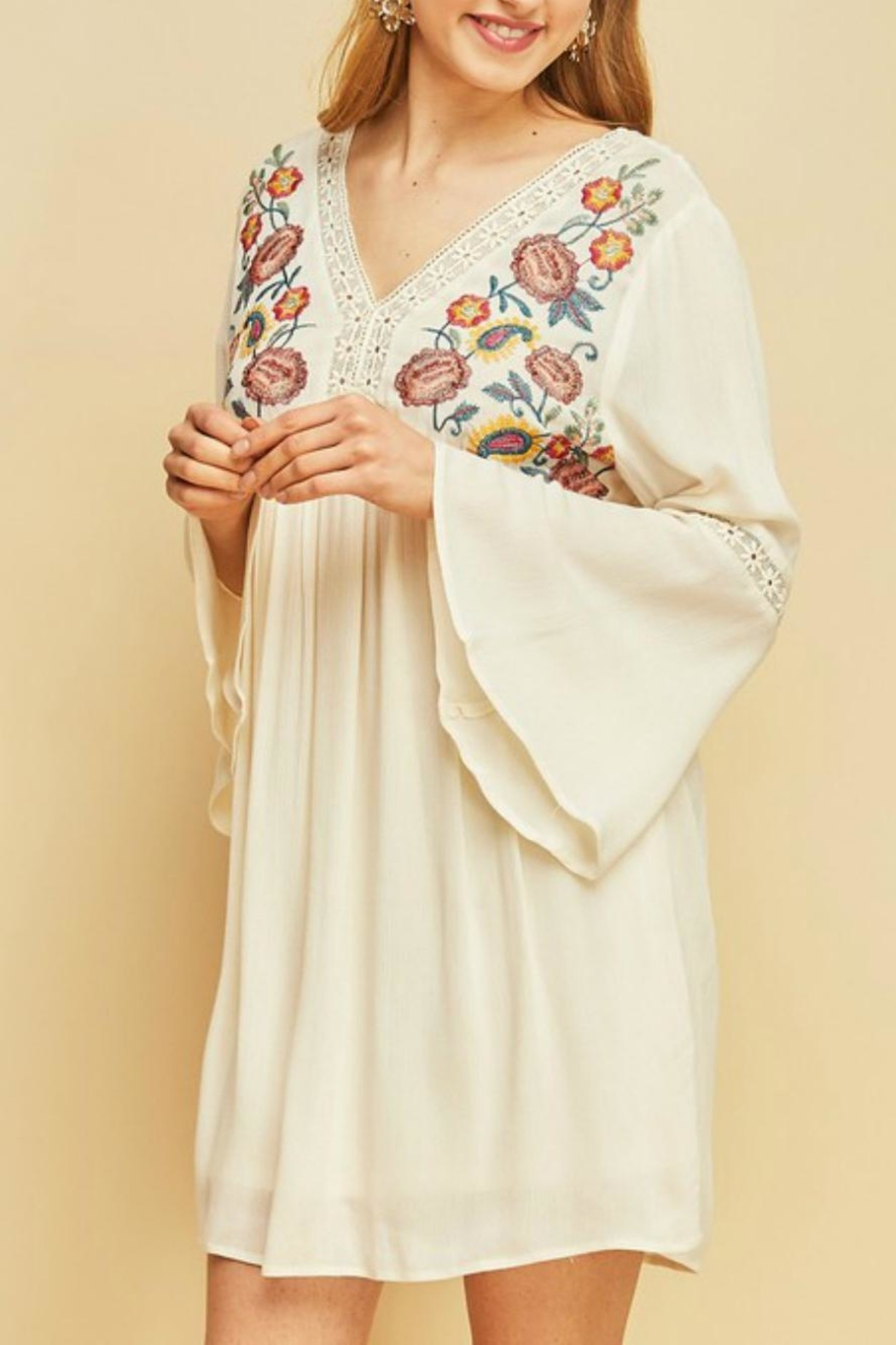 Entro Boho Embroidered-Floral Dress - Front Full Image