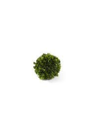 Maison A Boxwood Ball - Front cropped