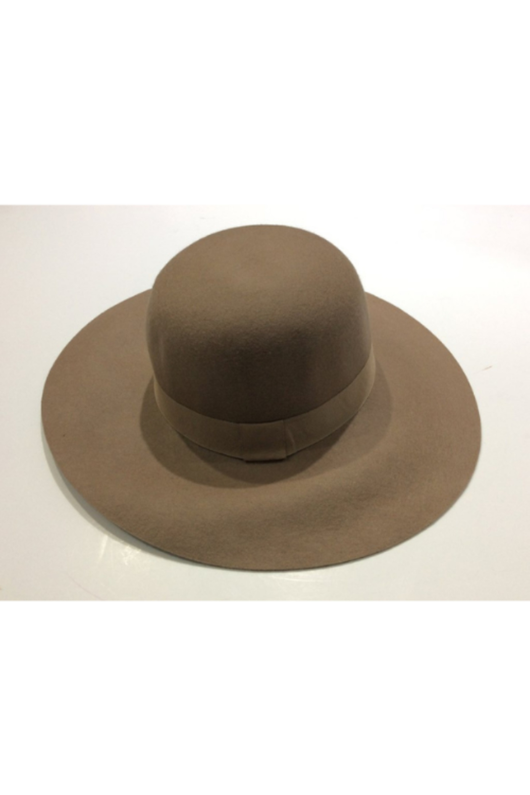 DiJore Broad brimmed hat - Main Image