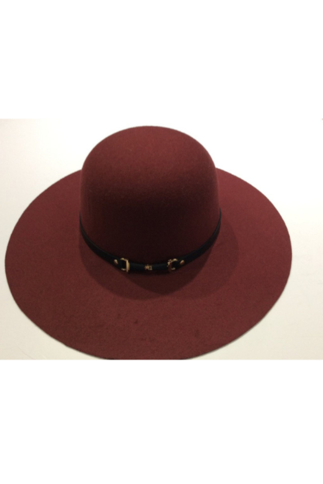 DiJore Broad brimmed hat - Front Cropped Image