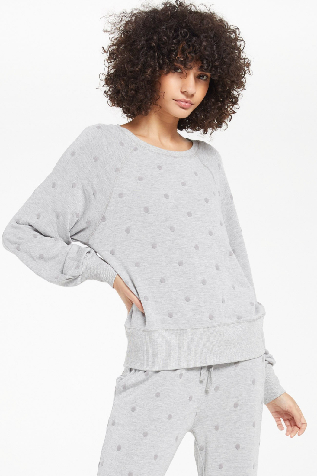 z supply Brook Dot Top - Front Cropped Image