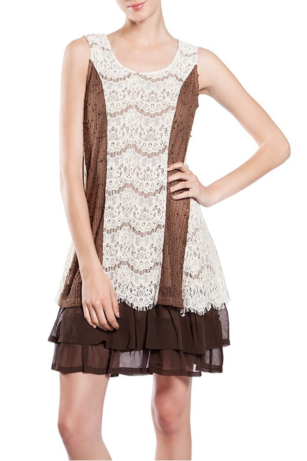 The Vintage Valet Brown Lace Dress - Main Image