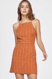 Greylin Bruna Pinstripe Dress - Front full body