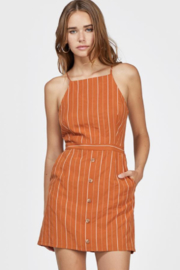 Greylin Bruna Pinstripe Dress - Product Mini Image