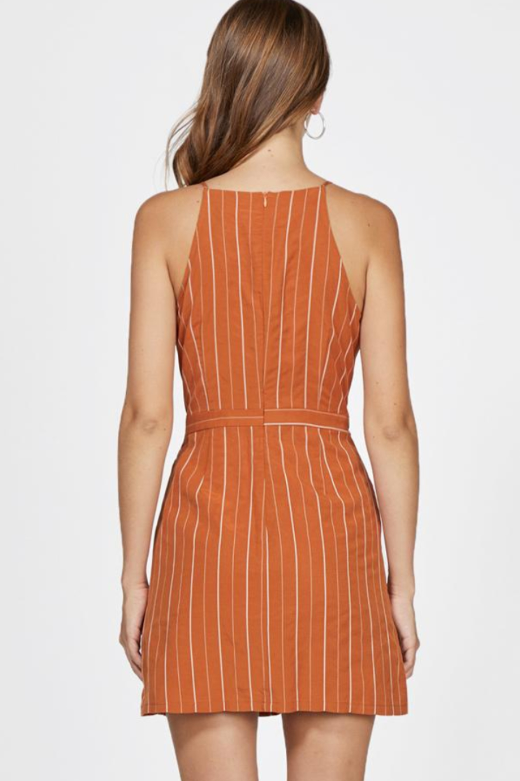 Greylin Bruna Pinstripe Dress - Back Cropped Image