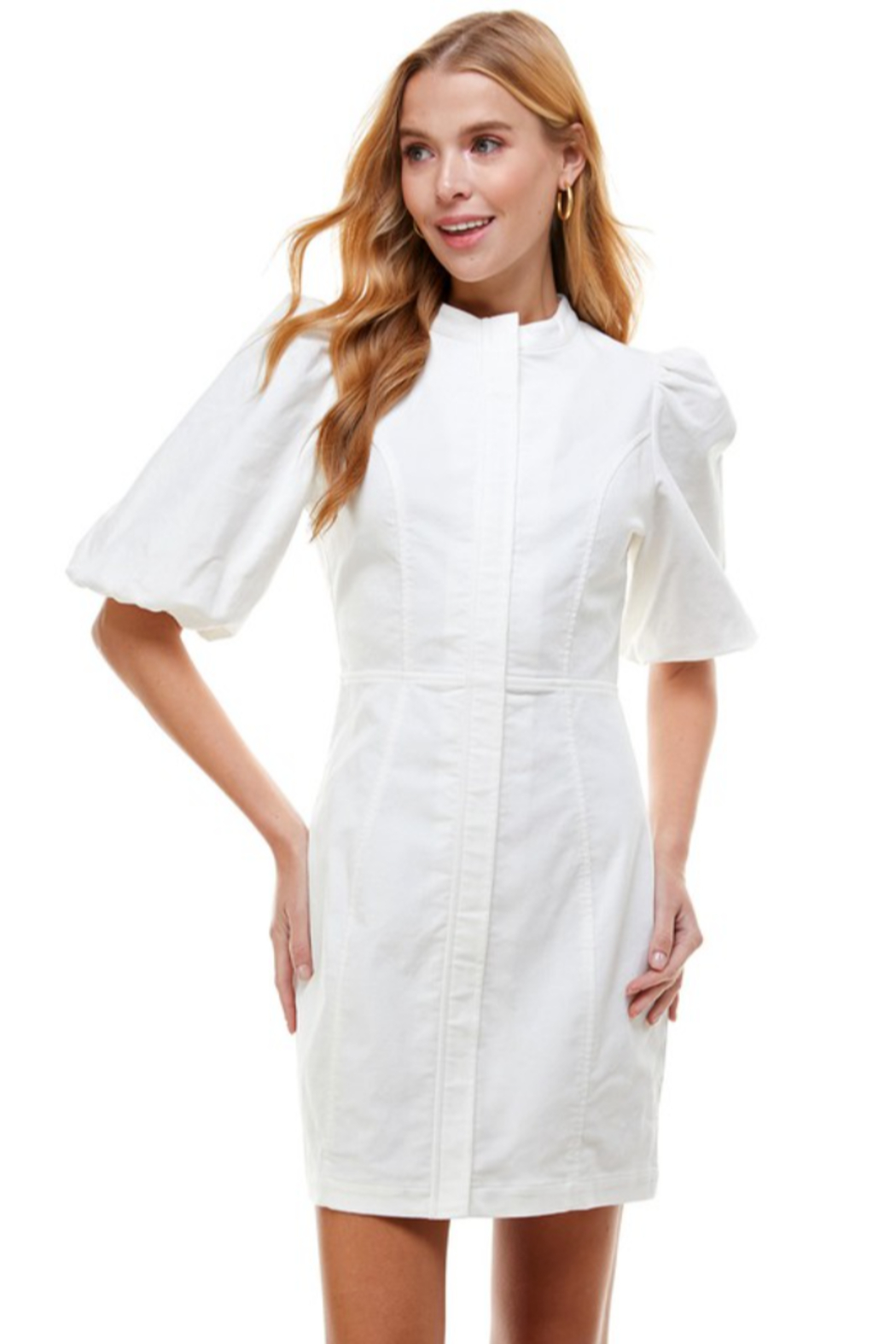TCEC Bubble Sleeve Dress - Front Cropped Image