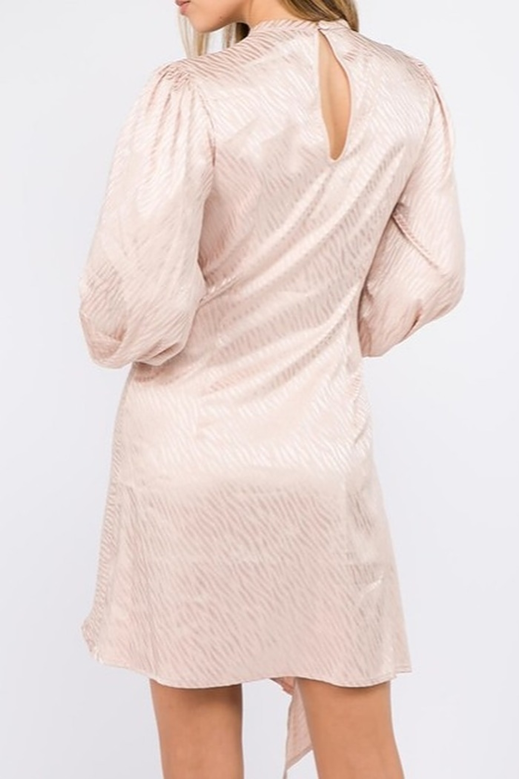On Twelfth Bubble Sleeve Dress - Side Cropped Image