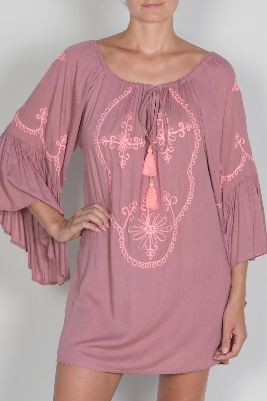 Buddha Sayulita Camila Embroidered Dress - Front Cropped Image
