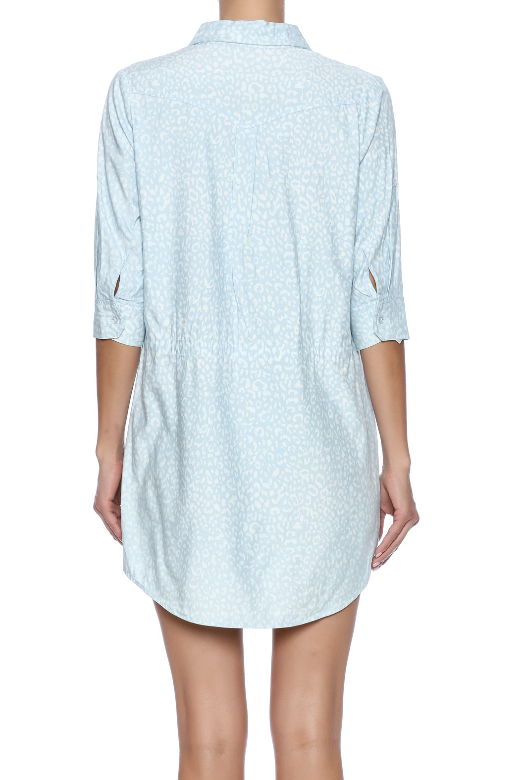 Buddy Love Orlando Shirt Dress - Back Cropped Image