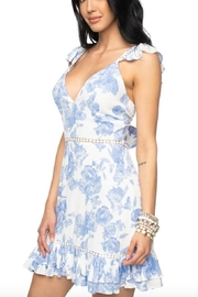 Buddy Love Cameron Flutter Dress - Front full body