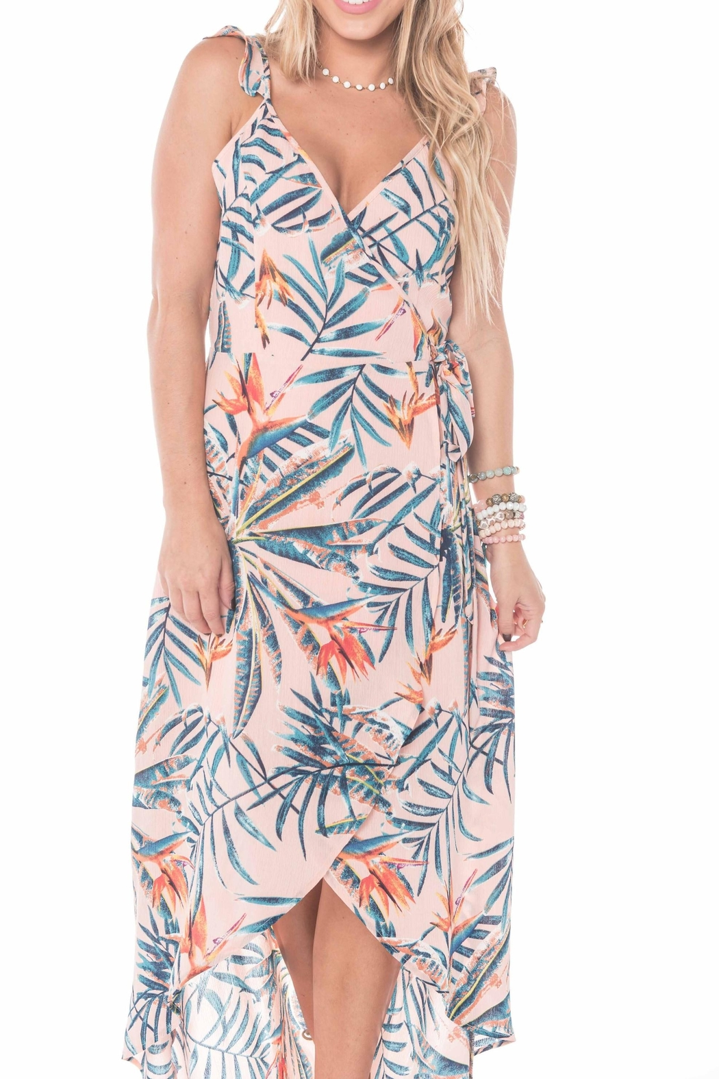 Buddy Love Costa Rica Dress - Front Full Image