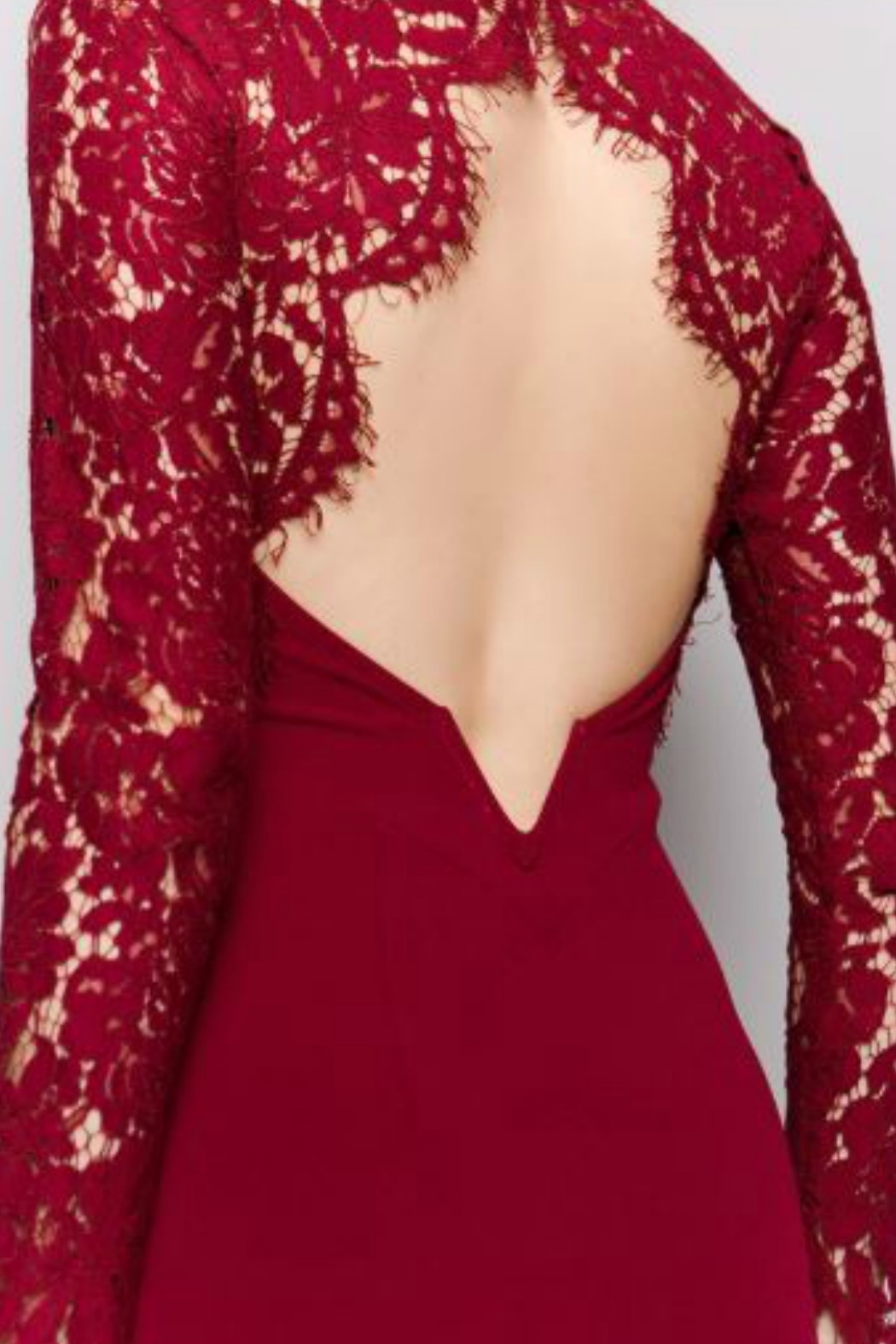 Minuet Burgundy Long Formal Dress with Lace Sleeve - Back Cropped Image