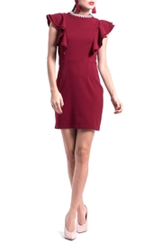 DOLCICIMO Burgundy Silvercollar Dress - Product Mini Image