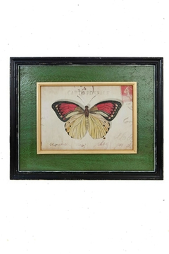 Shoptiques Product: Butterfly Framed Art