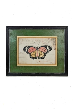 Shoptiques Product: Butterfly Framed Print