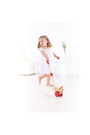 Hape Butterfly Push Toy - Front full body