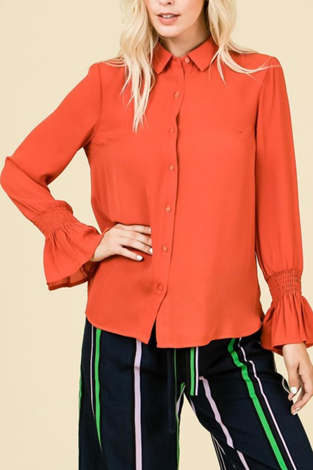 Lumiere Button Down Blouse - Main Image