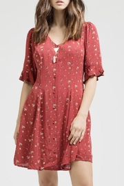 Blu Pepper Button Down Dress - Front cropped