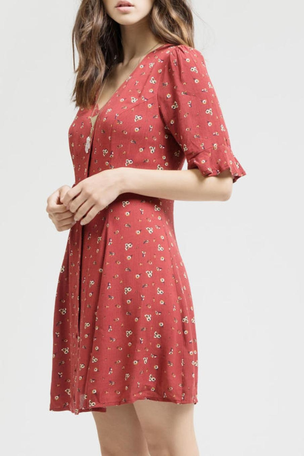 Blu Pepper Button Down Dress - Back Cropped Image