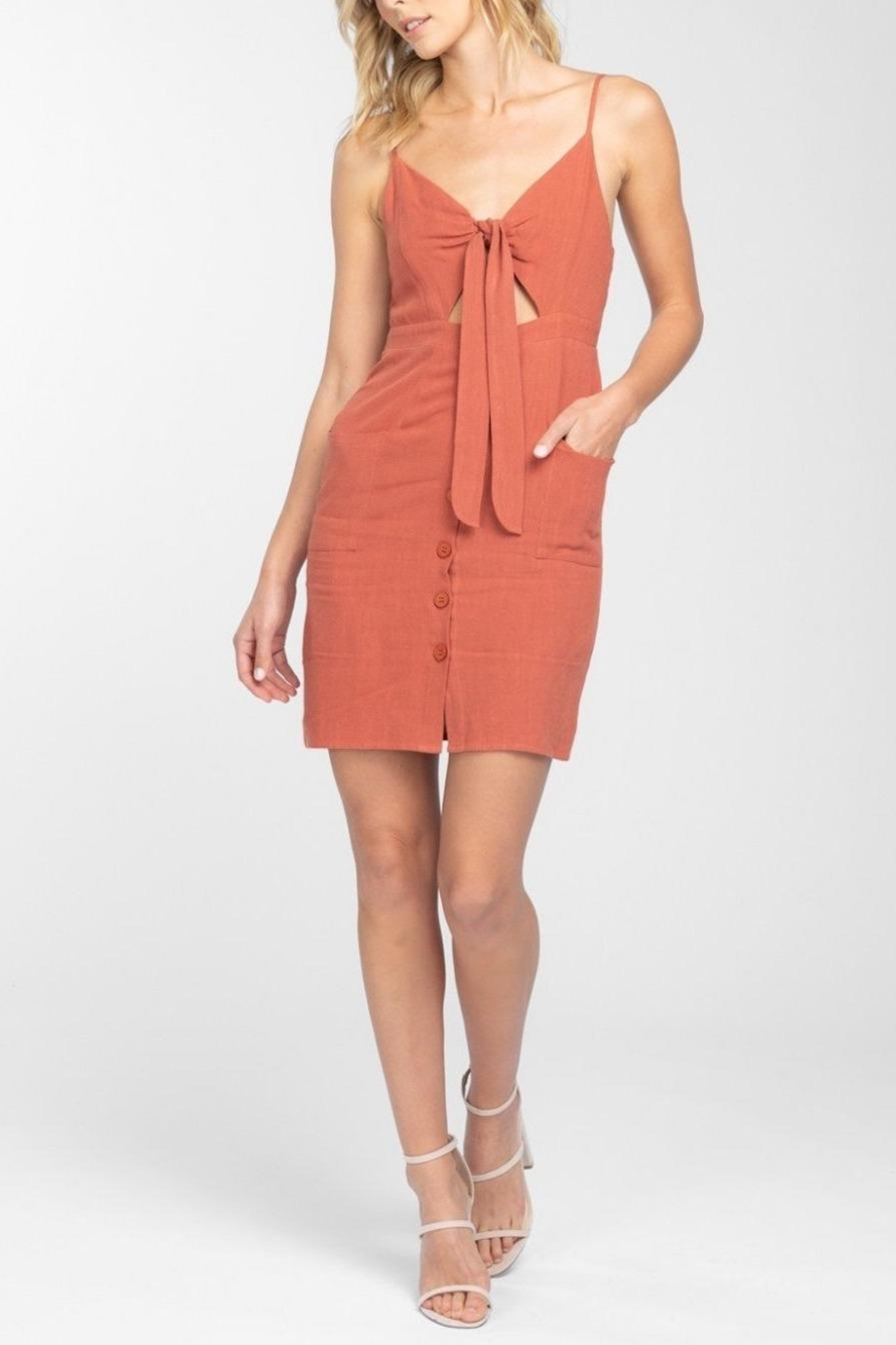 Everly Button Front-Tie Mini-Dress - Side Cropped Image
