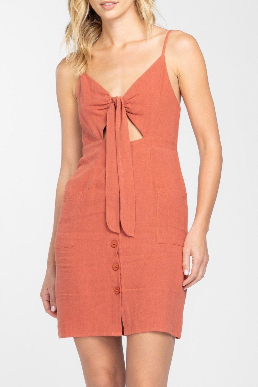 Everly Button Front-Tie Mini-Dress - Back Cropped Image