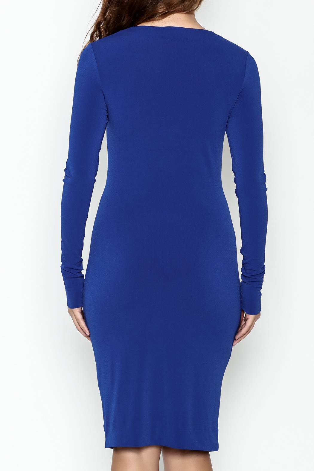 By Malene Birger Amillos Dress - Back Cropped Image