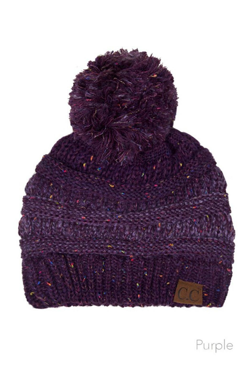 C.C. Ombre Pom-Pom Beanie - Front Cropped Image