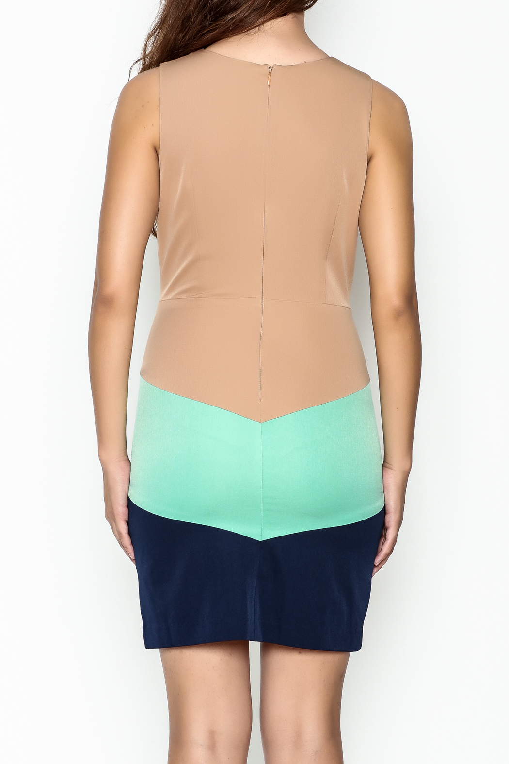 C. Luce Fall Colorblock Dress - Back Cropped Image