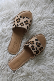 Coconuts by Matisse Cabana Slide - Front cropped
