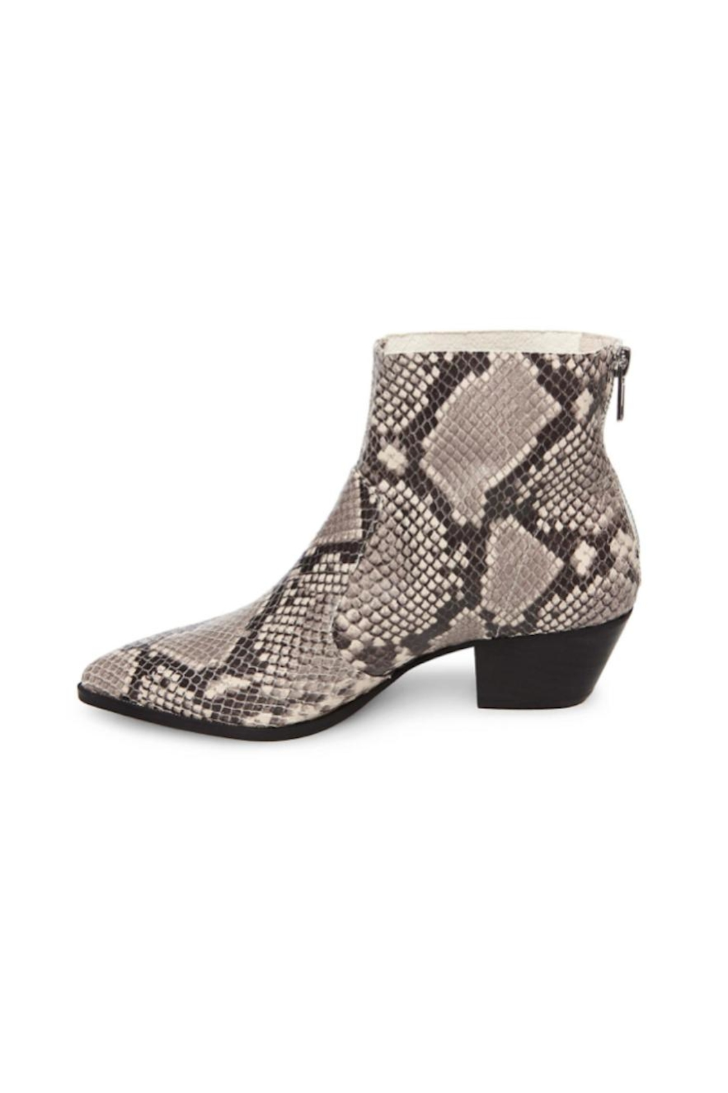 33408039a19 Steve Madden Cafe Snake Boots from New Jersey by The House — Shoptiques