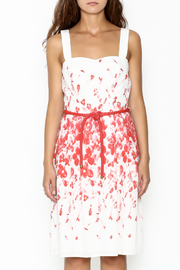 Camelot A Line Print Dress - Front full body
