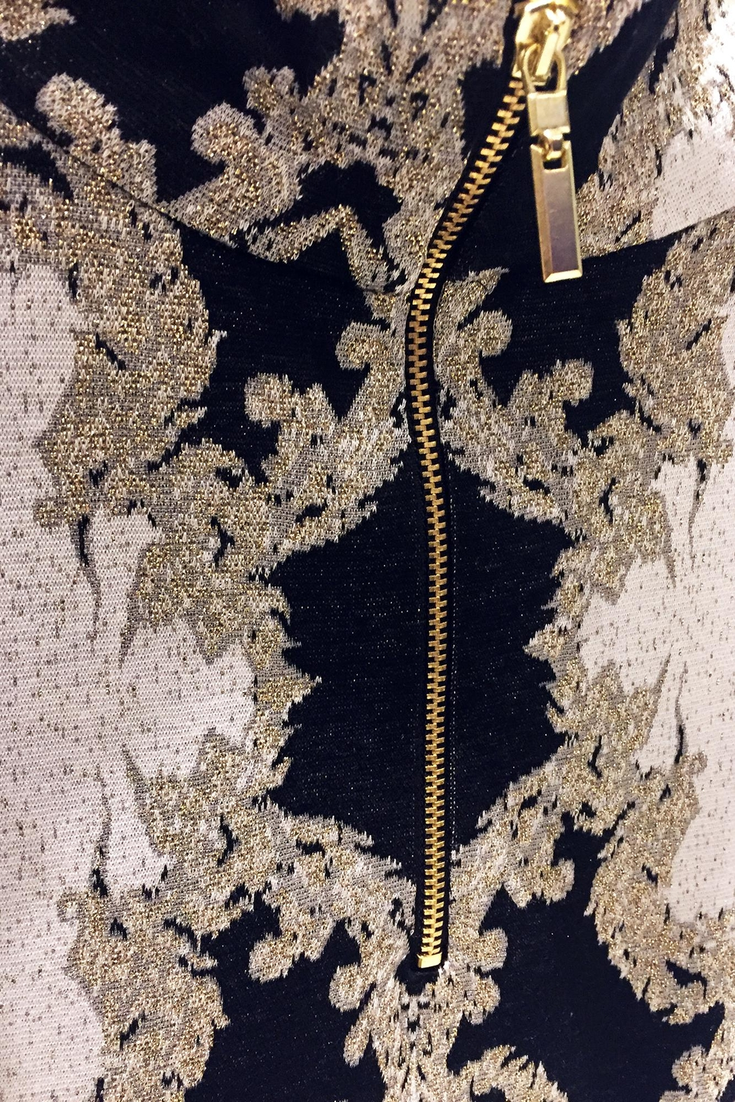 Camelot Embroidered Metallic Top - Side Cropped Image