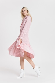 English Factory Candy Dress - Front cropped