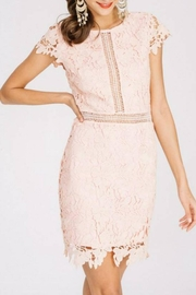 Main Strip Cap-Sleeve Lace Dress - Product Mini Image