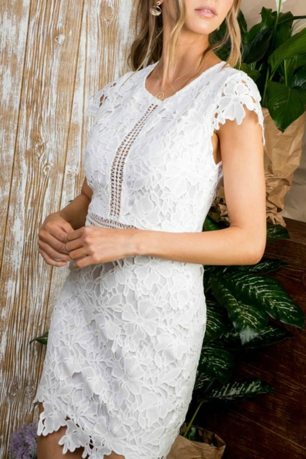 Pretty Little Things Cap-Sleeve Lace Dress - Main Image