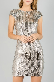 Minuet Cap Sleeve Sequin Dress - Front cropped