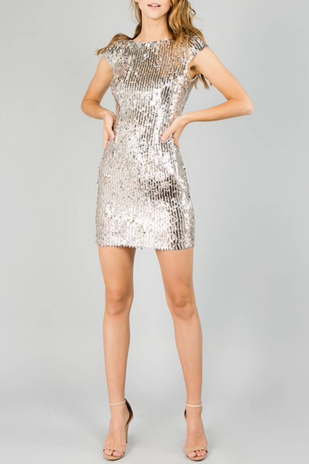 Minuet Cap Sleeve Sequin Dress - Back Cropped Image