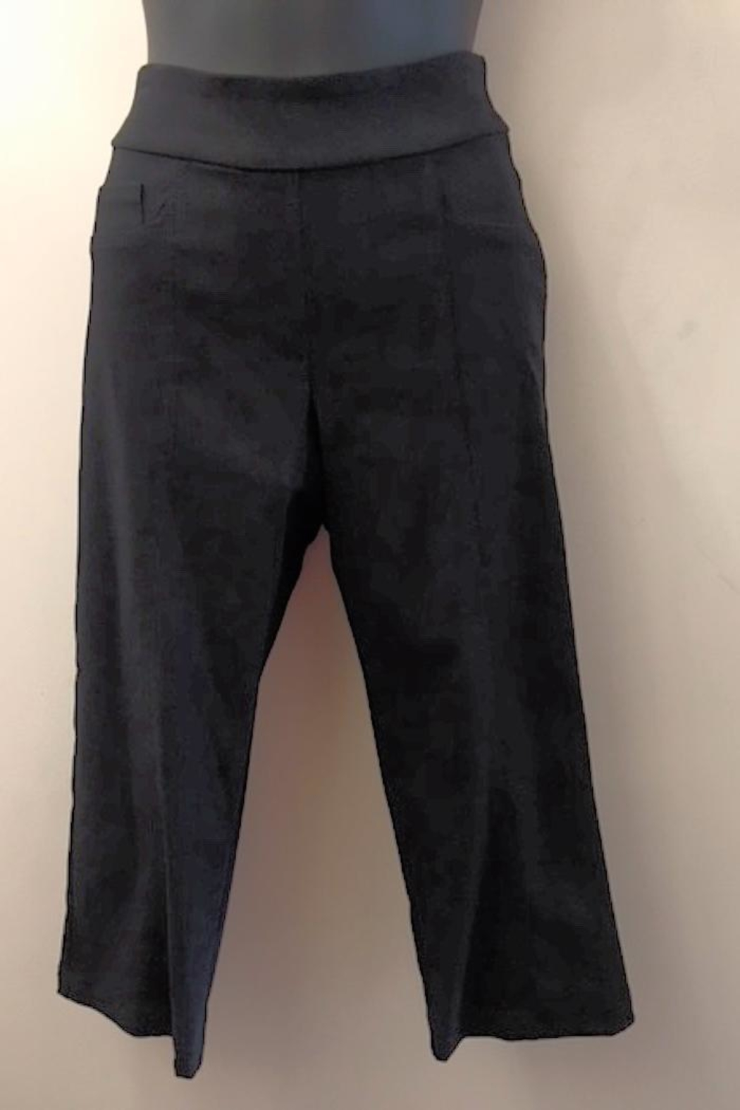 Miko Capri Stretch Pant - Front Cropped Image