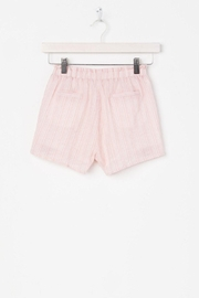 Miss Me Carefree Embroidered Shorts - Side cropped