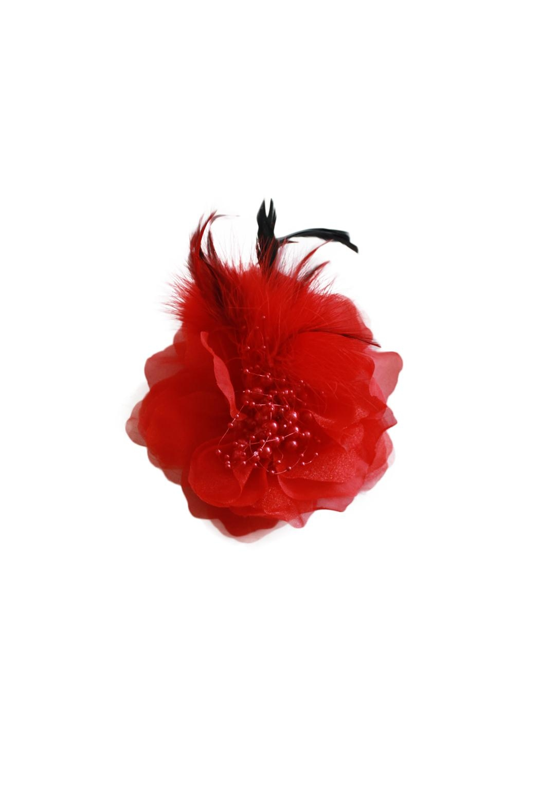Carte Blanche Scarlet Fascinator - Front Cropped Image