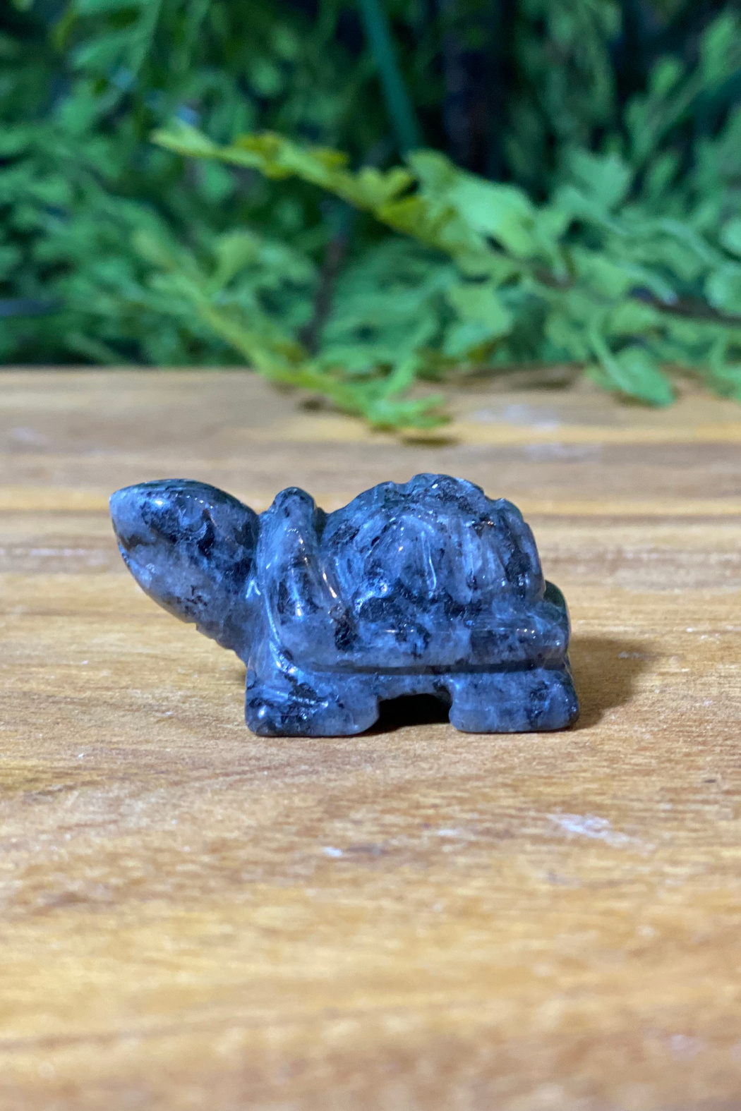 The Birch Tree Carved Stone Turtle - Main Image