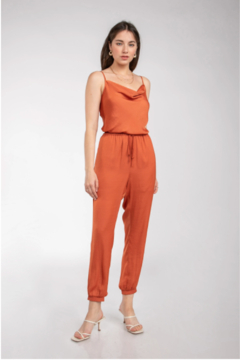 Naked Zebra Cassie Cowl Neck Jumpsuit - Alternate List Image