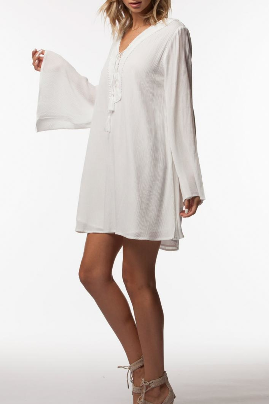 PPLA Clothing Cassius Dress - Side Cropped Image